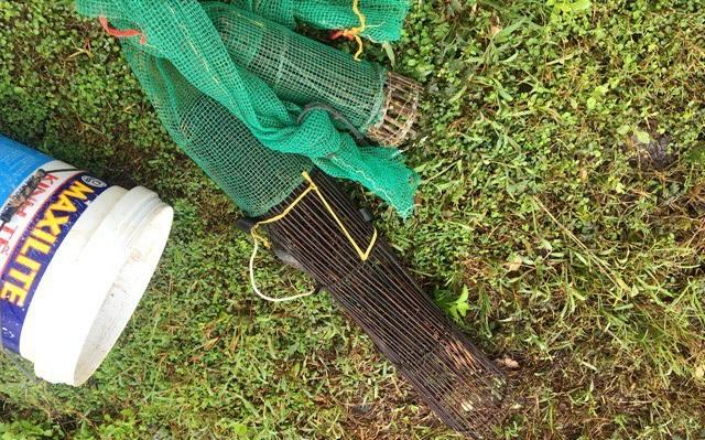 Ở mỗi gò đất, thợ săn sẽ xem vị trí hang chuột, lối mòn chuột thường đi lại để đặt nơm hoặc vây lưới một cách hiệu quả nhất. Đặt nơm hoặc lưới xong thì một người sẽ đào, hoặc đổ nước vào hang cho chuột chạy ra. Một người dùng gậy xua đuổi cho chuột chạy đúng hướng vào lưới hoặc nơm. Loài chuột có thói quen đi theo lối mòn nên ít con nào thoát được, anh Tâm cho biết thêm.
