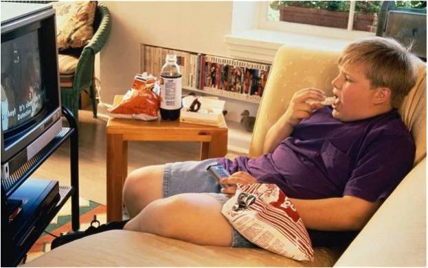 Ăn quá nhiều ở tuổi thiếu niên ảnh hưởng đến cả thế hệ sau - 1