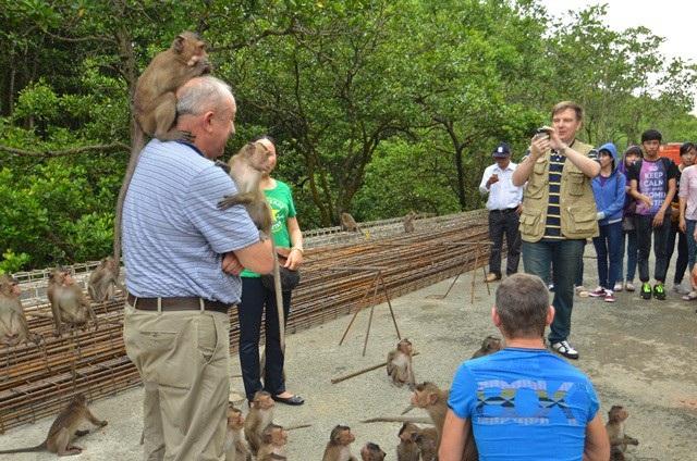 Tour TPHCM - trung tâm triển lãm yến sào Việt Nam - lâm viên Cần Giờ (đảo khỉ, chiến khu rừng sác) - TPHCM: đi về bằng tàu 1 ngày (ăn trưa).