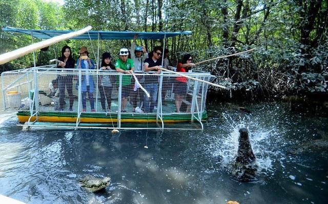 Tour TPHCM – khu du lịch sinh thái Vàm Sát - TPHCM: đi về bằng xe 1 ngày (ăn trưa).Ảnh: Du khách trải nghiệm câu cá sấu ở Vàm Sát