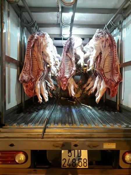 Chiếc xe tải bị phát hiện vận chuyển lô thịt heo bệnh vào Sài Gòn