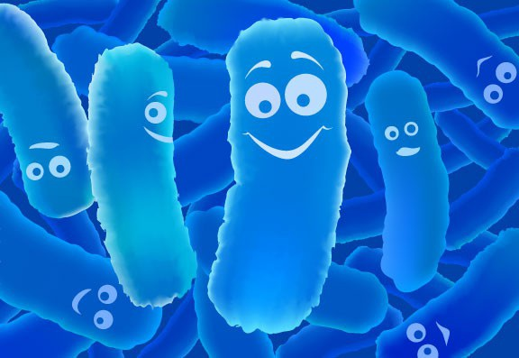 Lợi khuẩn Bifido giúp chấm dứt viêm đại tràng