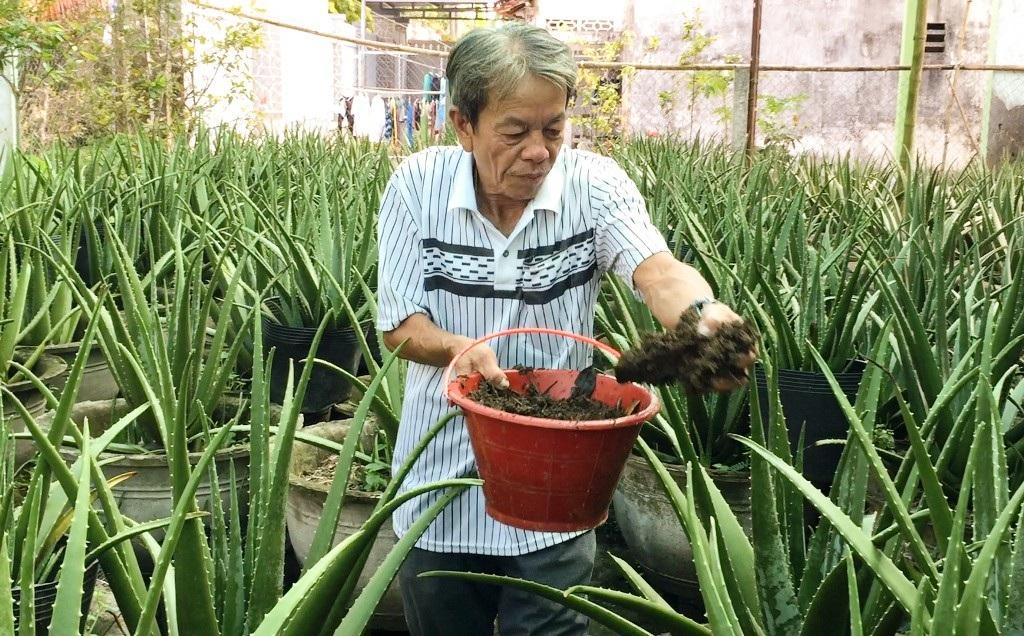 Nông dân kiếm 30 triệu đồng/tháng nhờ ...nuôi dúi và trồng nha đam - Ảnh 7.