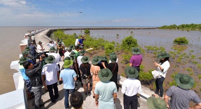 Mở tuyến tham quan xuyên rừng Vườn Quốc gia Mũi Cà Mau - Ảnh 2.
