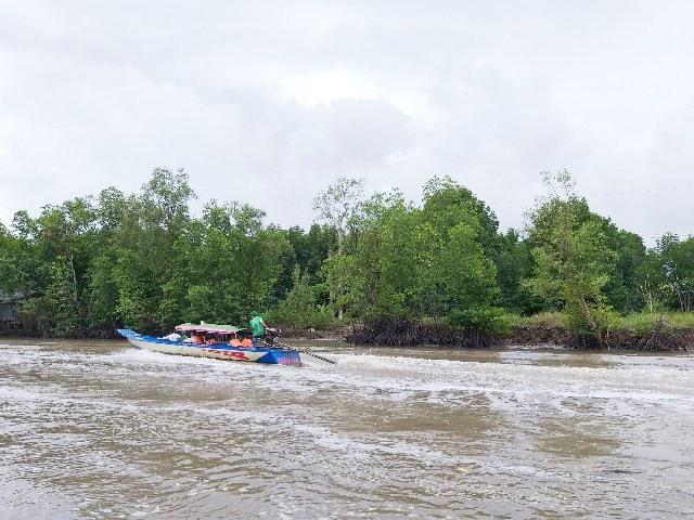Mở tuyến tham quan xuyên rừng Vườn Quốc gia Mũi Cà Mau - Ảnh 3.