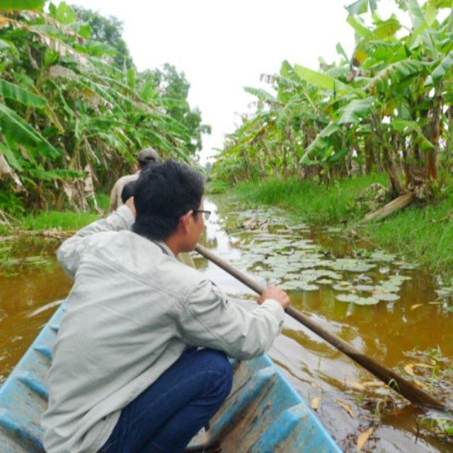 Về Cà Mau trải nghiệm tour khám phá cực Nam Tổ quốc  - Ảnh 1.