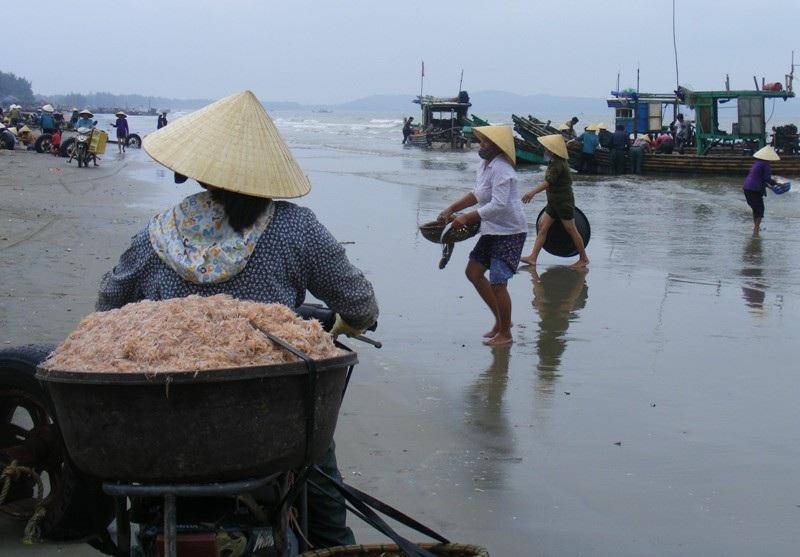 Cuối năm, ngư dân xứ Thanh trúng đậm mùa moi biển - Ảnh 10.