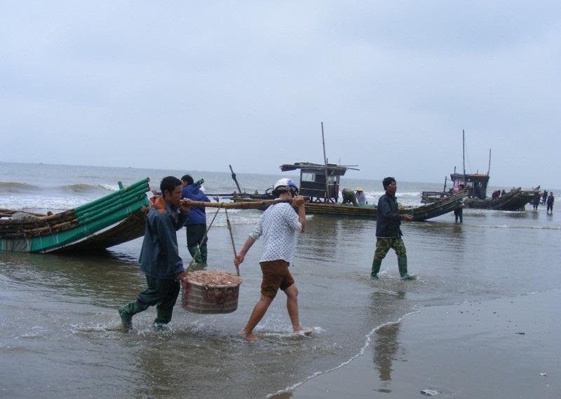 Cuối năm, ngư dân xứ Thanh trúng đậm mùa moi biển - Ảnh 3.