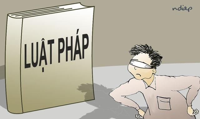 """Những người Việt xấu xí, """"não bé"""", gan to.... - 1"""