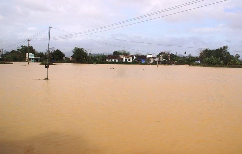 """Ngập lụt, nông dân """"mất"""" Tết Dương lịch ra đồng cứu… lúa - Ảnh 2."""