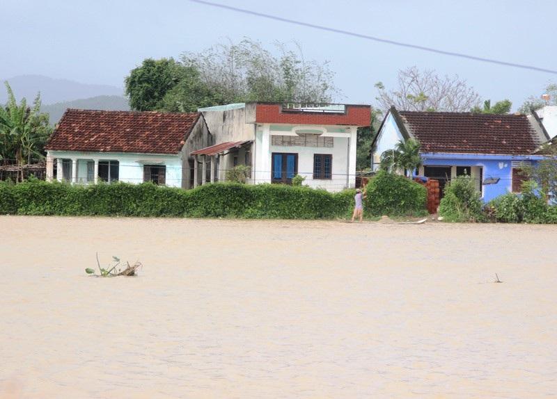"""Ngập lụt, nông dân """"mất"""" Tết Dương lịch ra đồng cứu… lúa - Ảnh 1."""