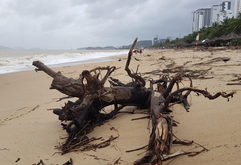 Nha Trang: Bãi biển vắng khách vì hàng tấn rác dạt vào bờ sau mưa lũ - Ảnh 3.