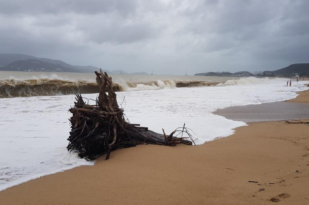 Nha Trang: Bãi biển vắng khách vì hàng tấn rác dạt vào bờ sau mưa lũ - Ảnh 6.