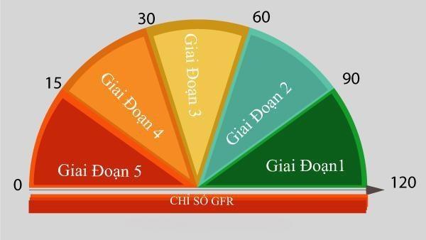 Mức độ suy giảm chức năng thận dựa trên tốc độ lọc cầu thận GFR