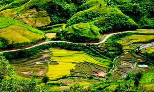 Thung lũng Sin Suối Hồ - Lai Châu (ảnh: Thienphuoctravel)