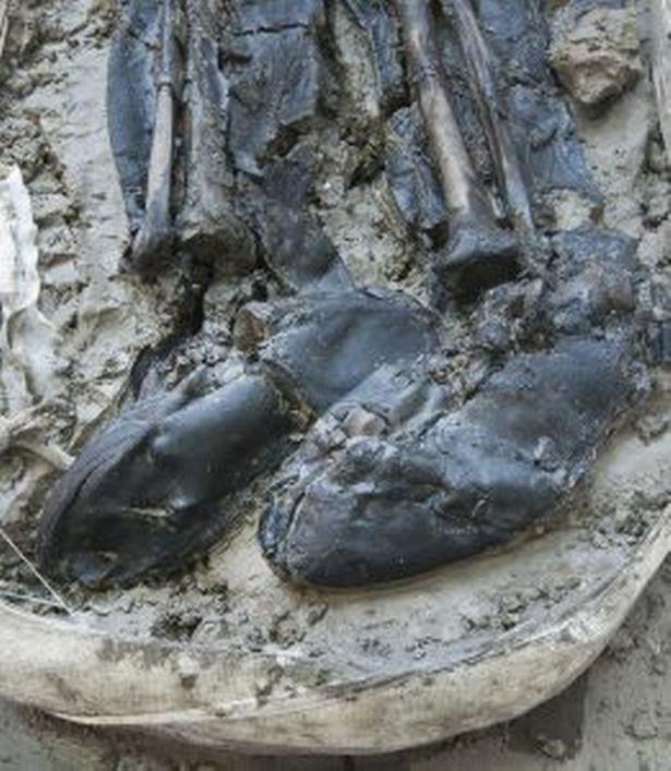 Đôi bốt của người đàn ông mang là đôi bốt cao quá gối - Ảnh từ MOLA Headland
