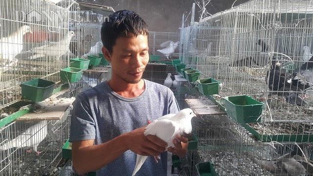 Sau khi bỏ nghề lái xe về quê lập nghiệp, anh Phạm Xuân Đức có nguồn thu nhập ổn định hơn 10 triệu đồng/tháng.