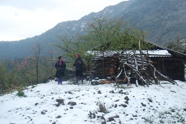 Tuyết rơi tại Sa Pa, Lao Cai (ản:Ngọc Triển)