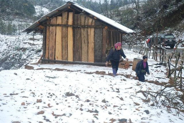 Tuyết rơi tại đèo Ô quý hồ, Sa Pa, Lào Cai (ảnh: Ngọc Triển)