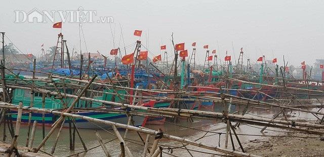 """Sắp đến Tết, ngư dân miền biển vẫn ra khơi """"săn"""" hải sản cuối năm - 8"""