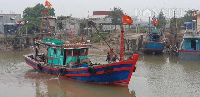 Những chuyến thuyền cuối cùng của năm Định Dậu, trở theo niềm tin và sự may mắn cho một năm mới bội thu cập bến.
