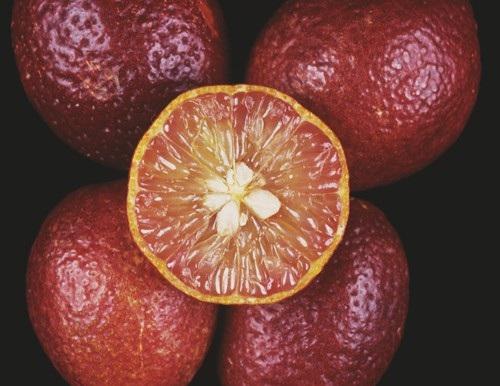 Chanh máu có vỏ đỏ, ruột vàng với mùi vị chua chua, ngọt ngọt cùng hương thơm dịu nhẹ.
