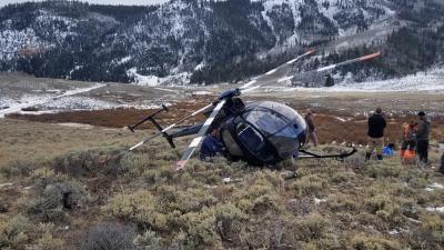 Chiếc trực thăng rơi xuống đất nằm chỏng chơ vì bị nai đâm phải