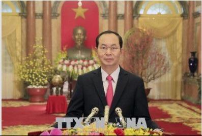 Chủ tịch nước: Mỗi người Việt cần nỗ lực khẳng định bản lĩnh, trí tuệ Việt Nam - 1