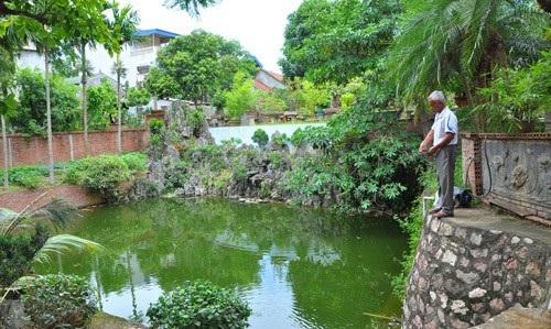 Ông Ngọ chăm sóc siêu cây bên gian nhà cổ rất đẹp của gia đình.