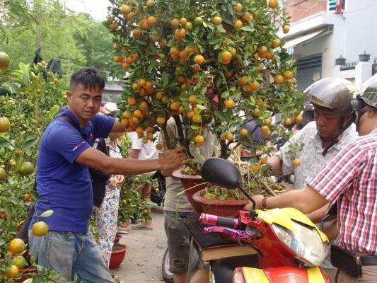 Anh Nguyễn Sĩ Dũng (trái) đặt chậu tắc lên xe cho khách hàng.