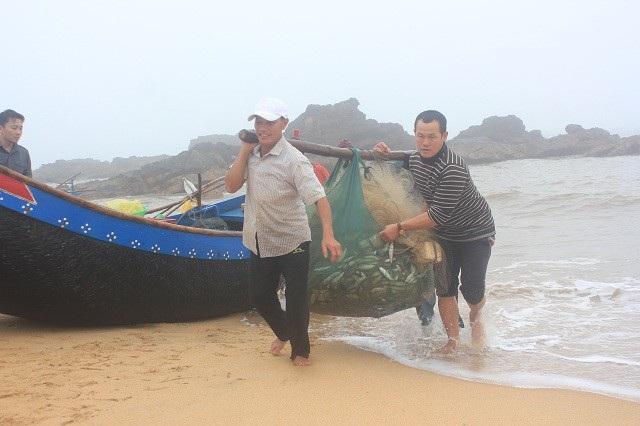 Trong những chuyến biển đầu năm mới, ngư dân tại Quảng Bình đã trúng đậm cá trích