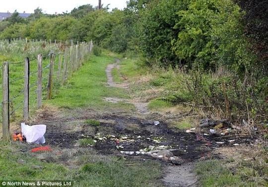 Hiện trường nơi nạn nhân bị thiêu sống trong ô tô ở hạt Durham. Ảnh: Daily Mail