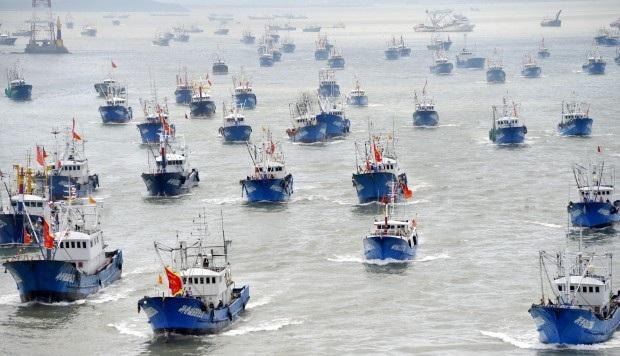 Các tàu cá Trung Quốc trong một chuyến ra khơi (Ảnh: China Foto Press)