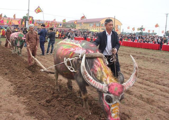 Sáng ngày 22/2 (ngày mùng 7 tháng Giêng năm Mậu Tuất), tỉnh Hà Nam tổ chức Lễ hội Tịch điền (cày ruộng) Đọi Sơn năm 2018. Đây là lễ hội truyền thống xuống đồng cày ruộng và cầu mong cho một năm mưa thuận, gió hòa, mùa màng tốt tươi. (Ảnh: Đức Văn)