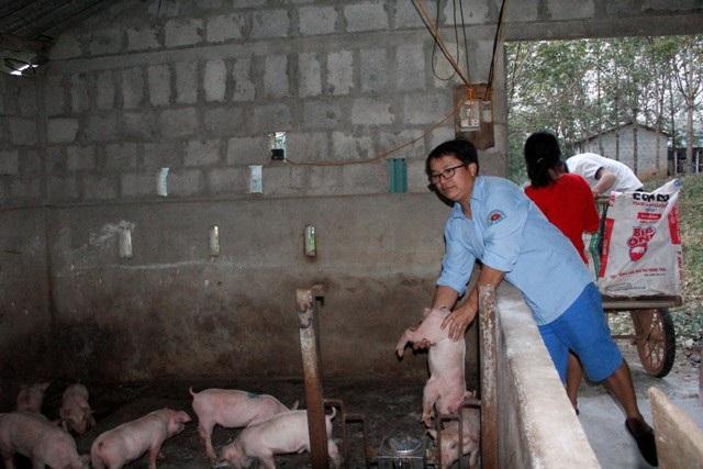 Huy không những là nông dân sản xuất giỏi, bông sen hồng của huyện Vĩnh Linh mà còn là cán bộ hội nông dân đi đầu trong mọi công tác. Ảnh: Ngọc Vũ