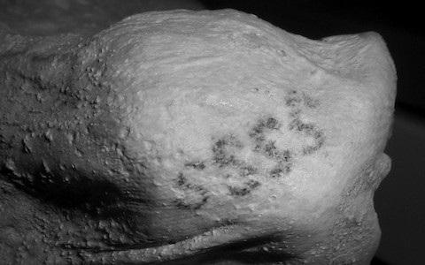 Hình xăm đầu tiên thế giới được phát hiện trên xác ướp của Gebelein - 1