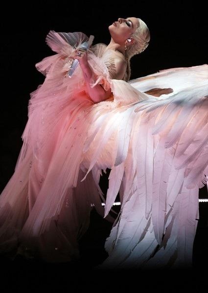 Mới đây Lady Gaga bất ngờ tuyên bố hủy 10 buổi diễn trong tour diễn vòng quanh thế giới vì lý do sức khỏe