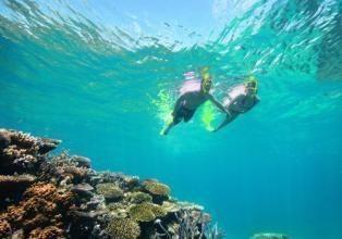Hàng ngày, anh khám phá các hòn đảo ở rặng san hô Great Barrier, trải nghiệm các hoạt động thể thao thú vị, sau đó cập nhật thông tin trên blog