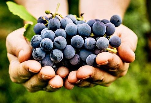Những loại trái cây chứa nhiều và ít đường nhất - 2