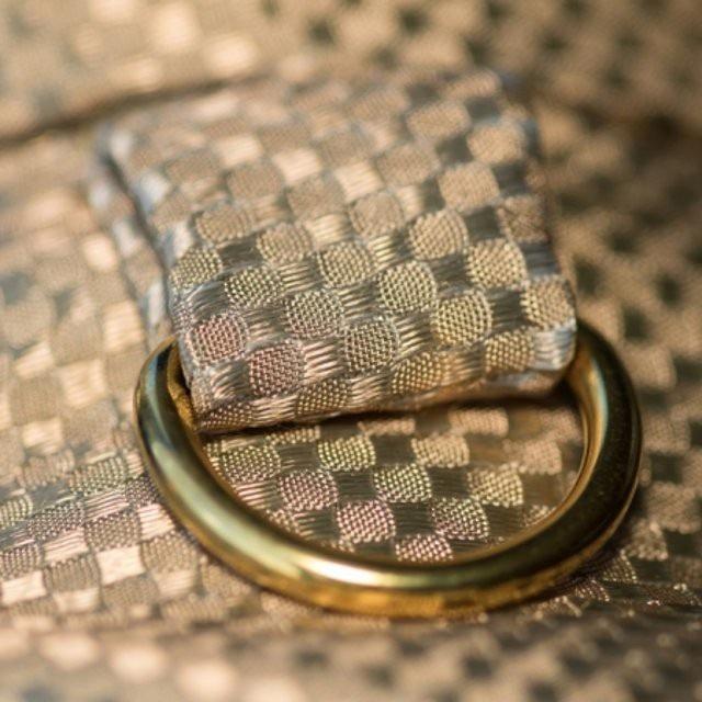 Thiết kế đẹp long lanh của chiếc áo khoác bằng vàng dành cho loài chó.