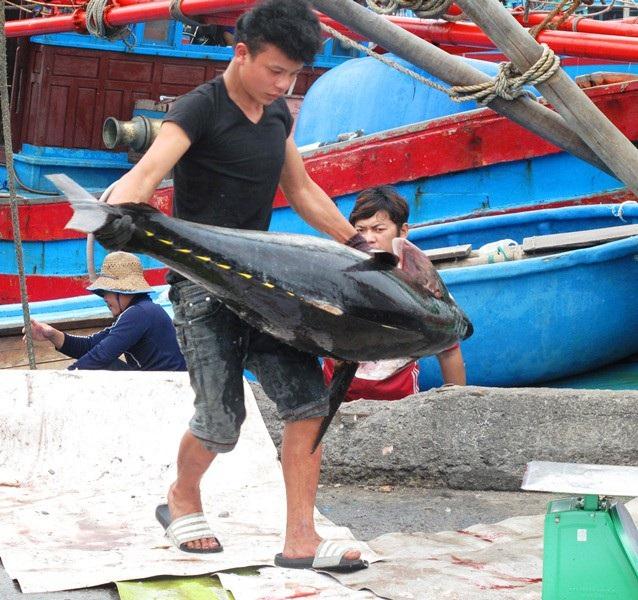 Dù lao động vất vả nhưng ngư dân phấn khởi khi đánh bắt đạt hiệu quả.