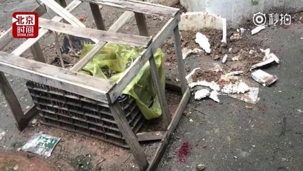 Chiếc thùng xốp dưới đất đã giúp cậu bé 4 tuổi sống sót một cách thần kỳ