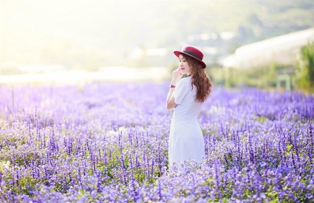 Cánh đồng hoa mới toanh ở Đà Lạt đẹp 'ngất ngây' đốn tim giới trẻ - 6