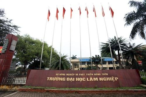 Năm 2018, trường ĐH Lâm Nghiệp Việt Nam sẽ tổ chức thi tuyển vào tháng 12
