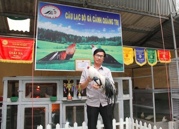 Anh Dũng hiện là thành viên Câu lạc bộ gà cảnh Quảng Trị, từng giành nhiều giải cao tại các cuộc thi gà cảnh vùng miền và toàn quốc. Ảnh: Ngọc Vũ.