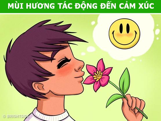 Những tác động ít ai ngờ của mùi hương lên bộ não con người - 4