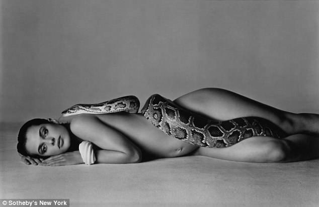 Bức ảnh của Richard Avedon chụp người mẫu Nastassja Kinski có thể được bán với giá 90.000 USD (2 tỷ đồng) hoặc hơn.
