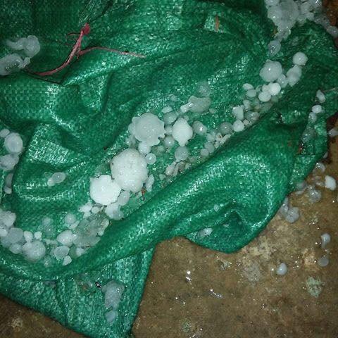 Mưa đá bất ngờ xuất hiện ở Lào Cai - 3