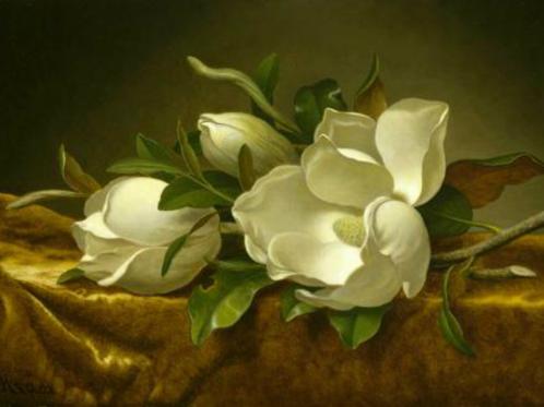 """Năm 1999, Bảo tàng Mỹ thuật ở Houston, Mỹ đã trả 1,25 triệu USD cho một người đàn ông sinh sống ở bang Indiana để mang về bức tranh từ thế kỷ 19 của họa sĩ Martin Johnson Heade có tên """"Magnolias on Gold Velvet Cloth"""". Điều đáng nói là, trước khi bức tranh được trưng bày trong bảo tàng, người chủ cũ từng mua nó về để che đi 1 cái lỗ trên bức tường trong nhà của anh với giá rất thấp. (Ảnh: Wikimedia)"""