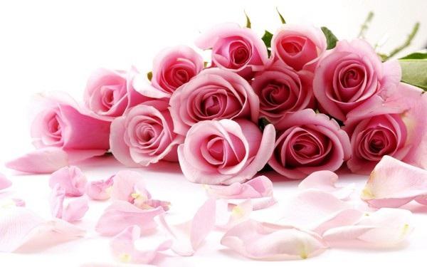 """Bộ ảnh đẹp chủ đề """"hoa"""" dùng để gửi lời chúc đến phái nữ trong ngày 8/3 - 4"""